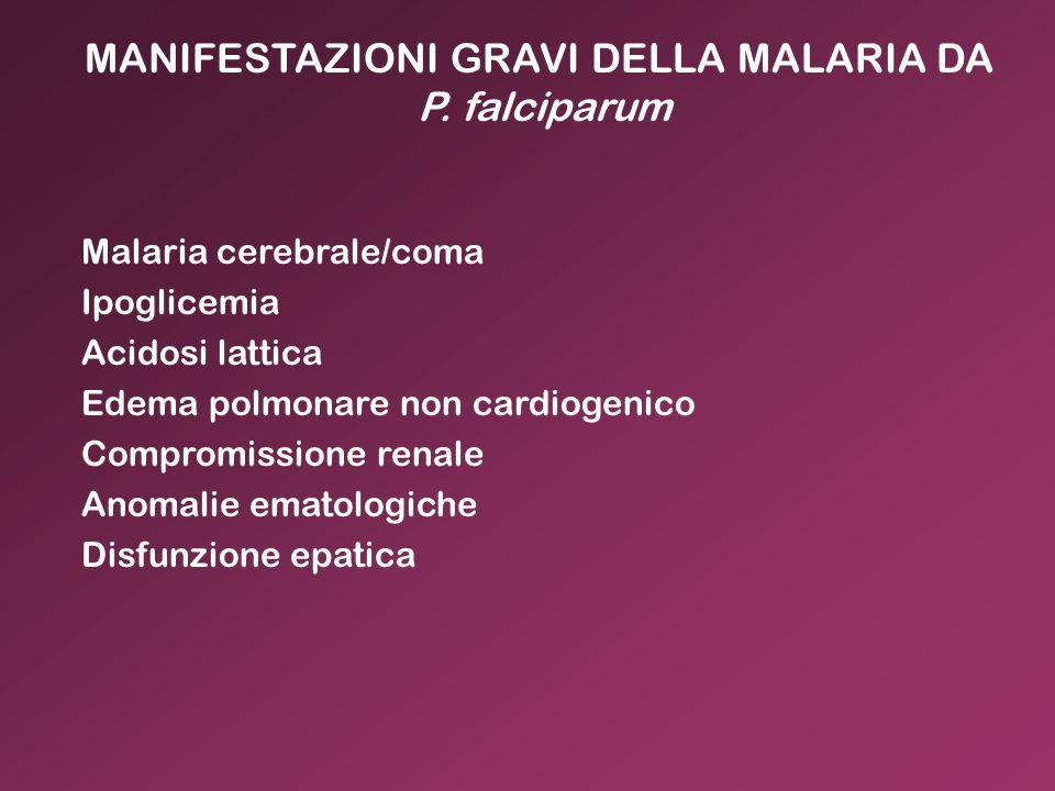 MANIFESTAZIONI GRAVI DELLA MALARIA DA P. falciparum Malaria cerebrale/coma Ipoglicemia Acidosi lattica Edema polmonare non cardiogenico Compromissione