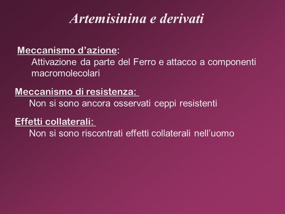 Artemisinina e derivati Meccanismo dazione: Attivazione da parte del Ferro e attacco a componenti macromolecolari Meccanismo di resistenza: Non si son