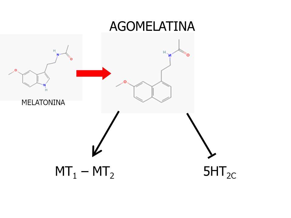 AGOMELATINA MT 1 – MT 2 5HT 2C MELATONINA