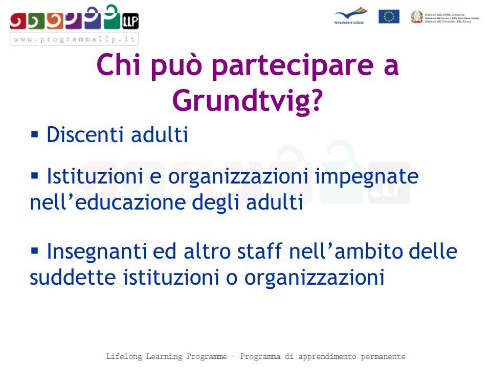 Chi può partecipare a Grundtvig.