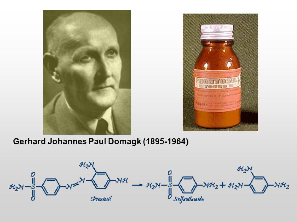 Gerhard Johannes Paul Domagk (1895-1964 )