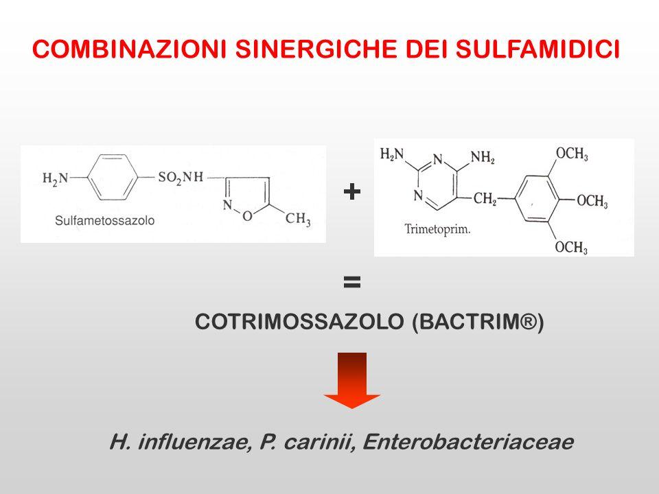 + = COTRIMOSSAZOLO (BACTRIM®) H. influenzae, P. carinii, Enterobacteriaceae COMBINAZIONI SINERGICHE DEI SULFAMIDICI