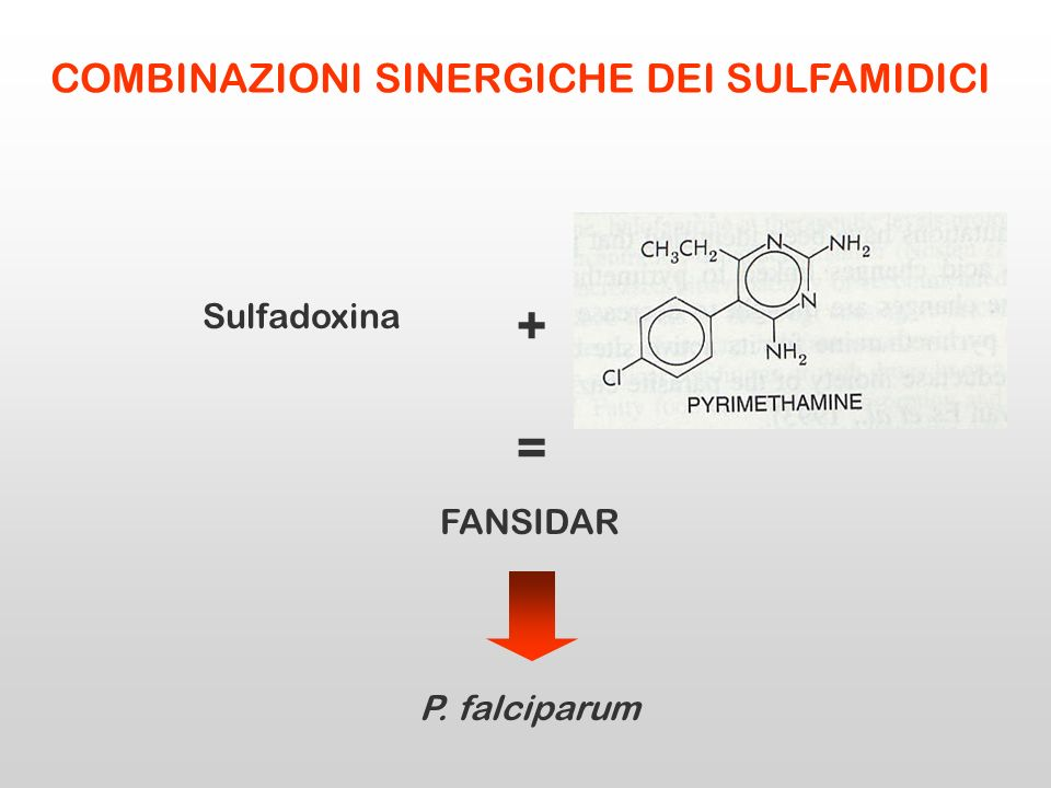 + Sulfadoxina FANSIDAR = P. falciparum COMBINAZIONI SINERGICHE DEI SULFAMIDICI