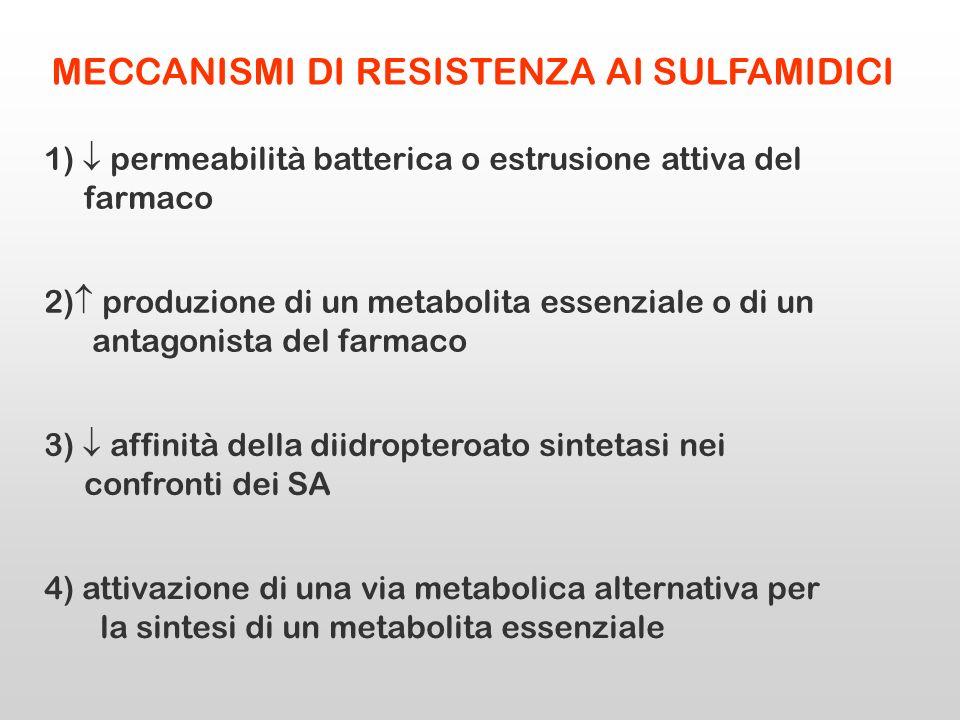 MECCANISMI DI RESISTENZA AI SULFAMIDICI 1) permeabilità batterica o estrusione attiva del farmaco 3) affinità della diidropteroato sintetasi nei confr