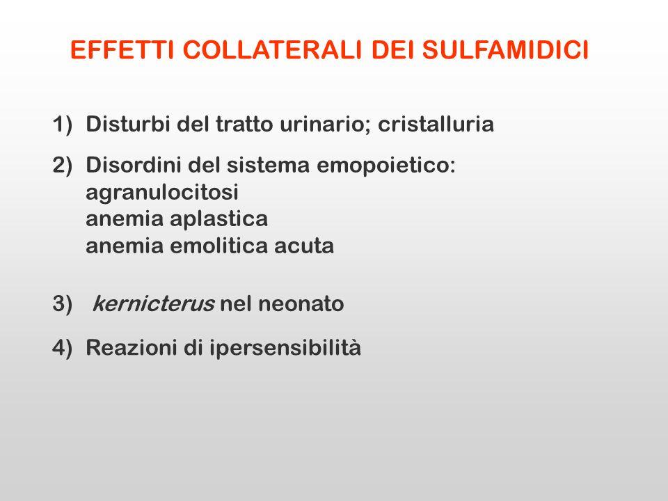 EFFETTI COLLATERALI DEI SULFAMIDICI 1)Disturbi del tratto urinario; cristalluria 2)Disordini del sistema emopoietico: agranulocitosi anemia aplastica