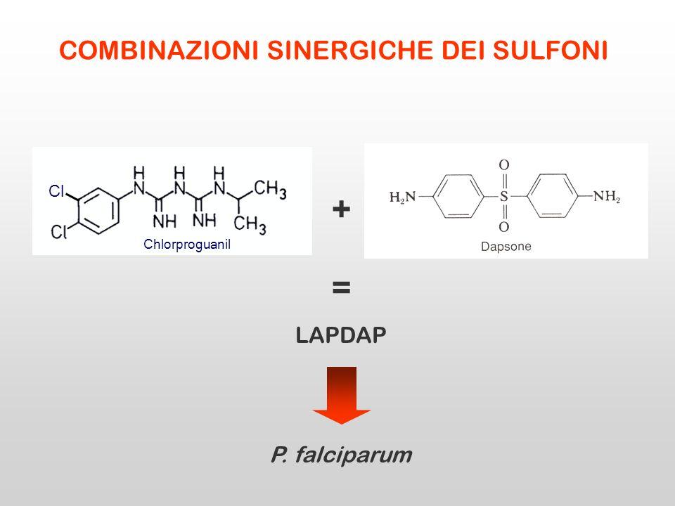 + Sulfadoxina LAPDAP = P. falciparum COMBINAZIONI SINERGICHE DEI SULFONI Cl Chlorproguanil