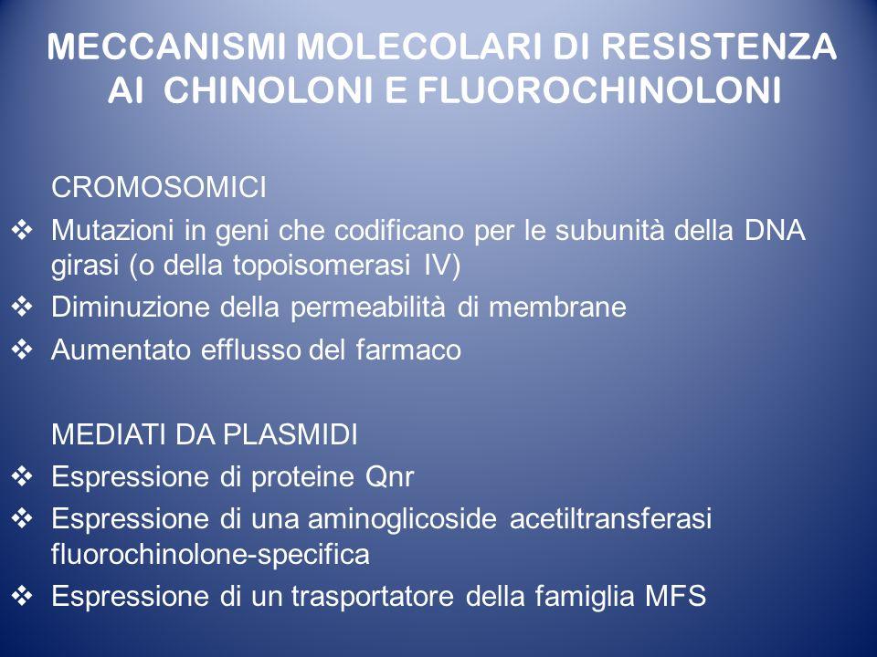 MECCANISMI MOLECOLARI DI RESISTENZA AI CHINOLONI E FLUOROCHINOLONI CROMOSOMICI Mutazioni in geni che codificano per le subunità della DNA girasi (o de