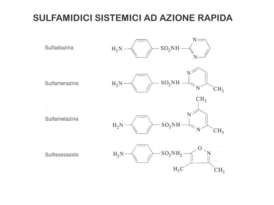 K. Drlica et al., Antimicrob. Agents Chemother. 52: 385-392, 2008