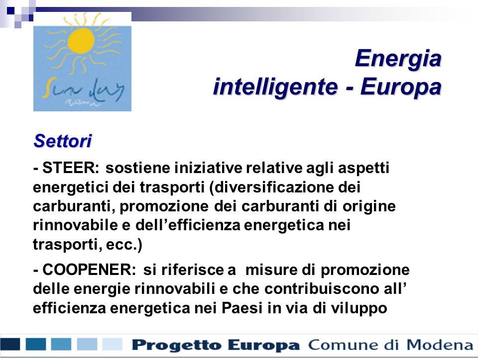 Settori - STEER: sostiene iniziative relative agli aspetti energetici dei trasporti (diversificazione dei carburanti, promozione dei carburanti di origine rinnovabile e dellefficienza energetica nei trasporti, ecc.) - COOPENER: si riferisce a misure di promozione delle energie rinnovabili e che contribuiscono all efficienza energetica nei Paesi in via di viluppo Energia intelligente - Europa