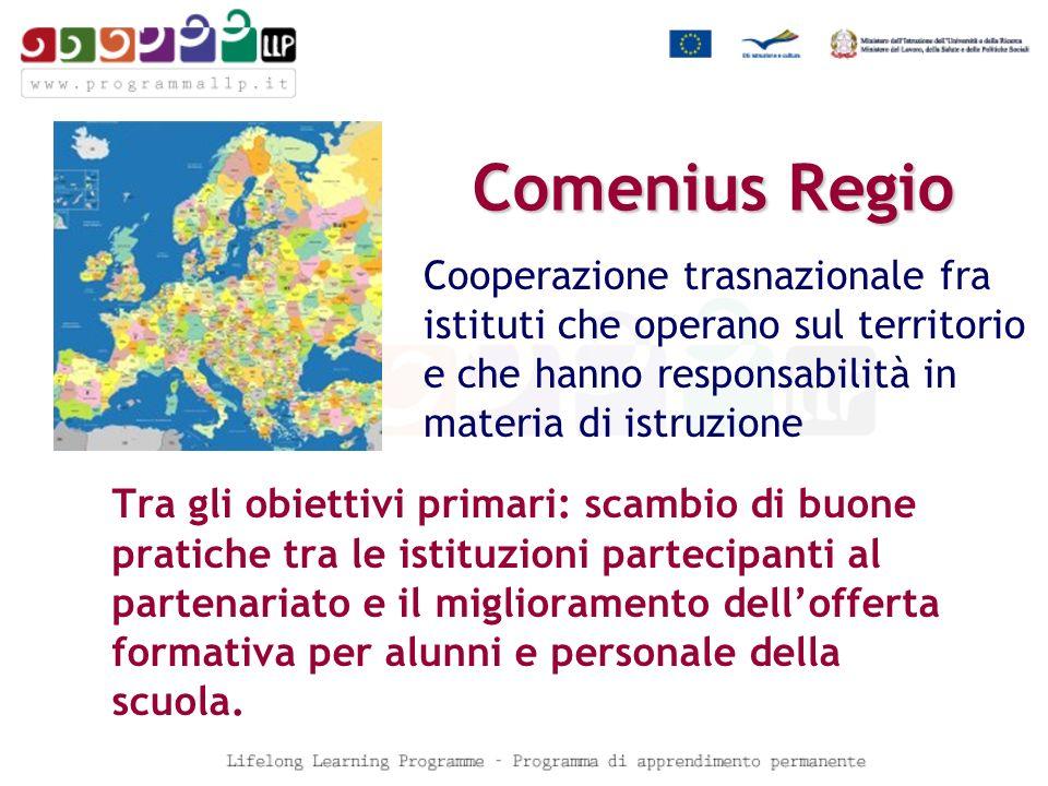 Comenius Regio Tra gli obiettivi primari: scambio di buone pratiche tra le istituzioni partecipanti al partenariato e il miglioramento dellofferta formativa per alunni e personale della scuola.