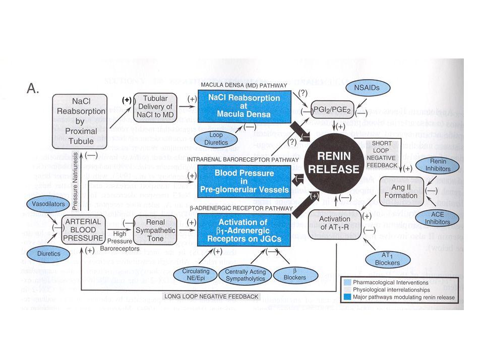 CLASSIFICAZIONE DEI FARMACI ANTI-IPERTENSIVI IN BASE AL LORO MECCANISMO DAZIONE PRINCIPALE 1)Farmaci attivi sul sistema RAA 2)Vasodilatatori diretti a)nitroprussiato sodico (arterie e vene) b)Inibitori delle fosfodiesterasi c)potassium channel openers (arterie) d)bloccanti dei canali del calcio 3)Simpaticolitici a)Ad azione centrale ( -metildopa, clonidina) b)Bloccanti gangliari (trimetafano) c)Bloccanti del neurone adrenergico (reserpina, guanetidina) d)Antagonisti -adrenergici (propranololo, metoprololo) e)Antagonisti -adrenergici (fenossibenzamina, fentolamina, prazosina) f)Antagonisti adrenergici misti (labetalolo)