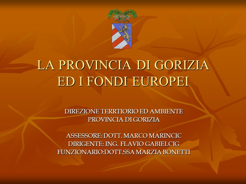 LA PROVINCIA DI GORIZIA ED I FONDI EUROPEI DIREZIONE TERRTIORIO ED AMBIENTE PROVINCIA DI GORIZIA ASSESSORE: DOTT. MARCO MARINCIC DIRIGENTE: ING. FLAVI