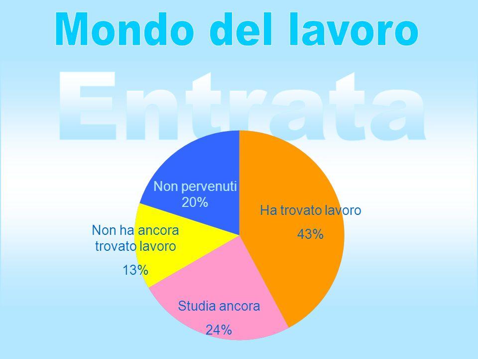 Studia ancora 24% Ha trovato lavoro 43% Non ha ancora trovato lavoro 13% Non pervenuti 20%