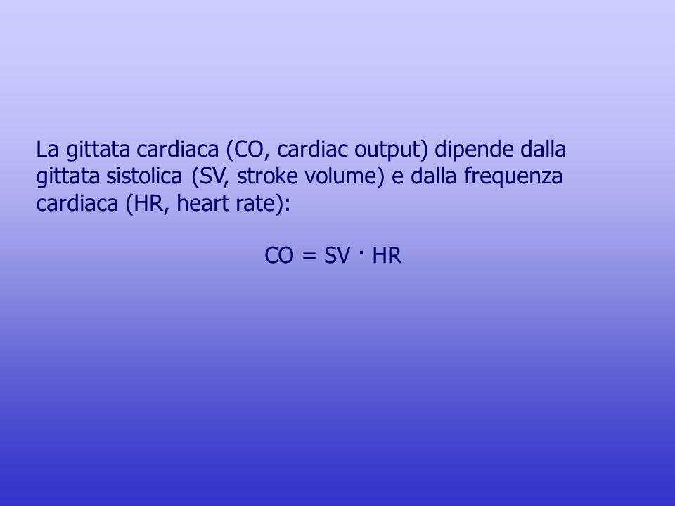CO = SV · HR La gittata cardiaca (CO, cardiac output) dipende dalla gittata sistolica (SV, stroke volume) e dalla frequenza cardiaca (HR, heart rate):