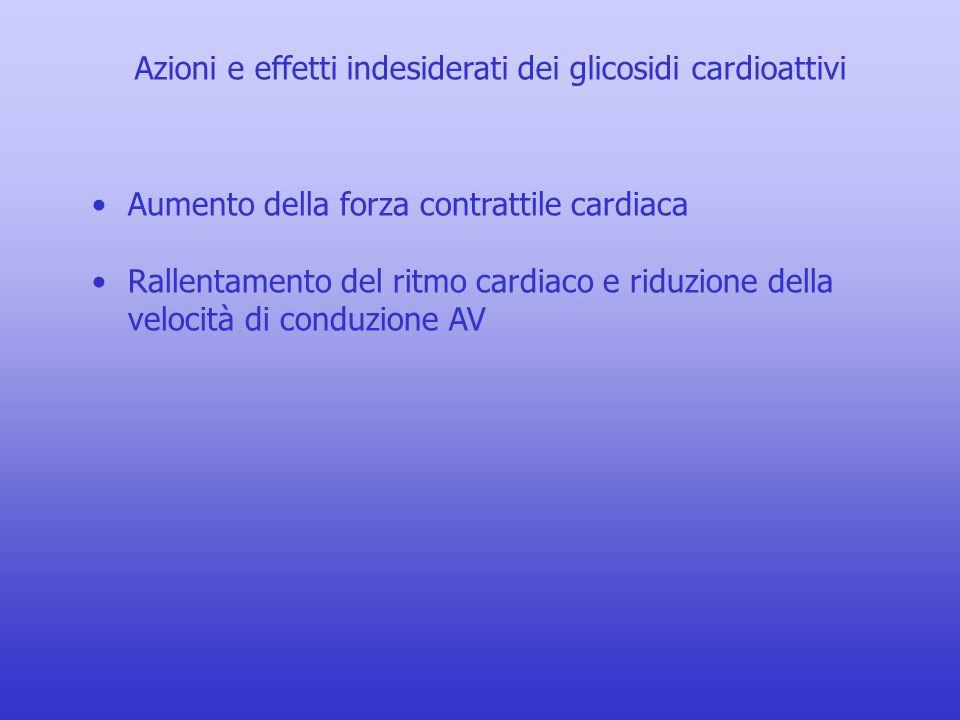 Azioni e effetti indesiderati dei glicosidi cardioattivi Aumento della forza contrattile cardiaca Rallentamento del ritmo cardiaco e riduzione della velocità di conduzione AV Disturbi del ritmo cardiaco: blocco della conduzione AV aumento di attività pacemaker ectopica