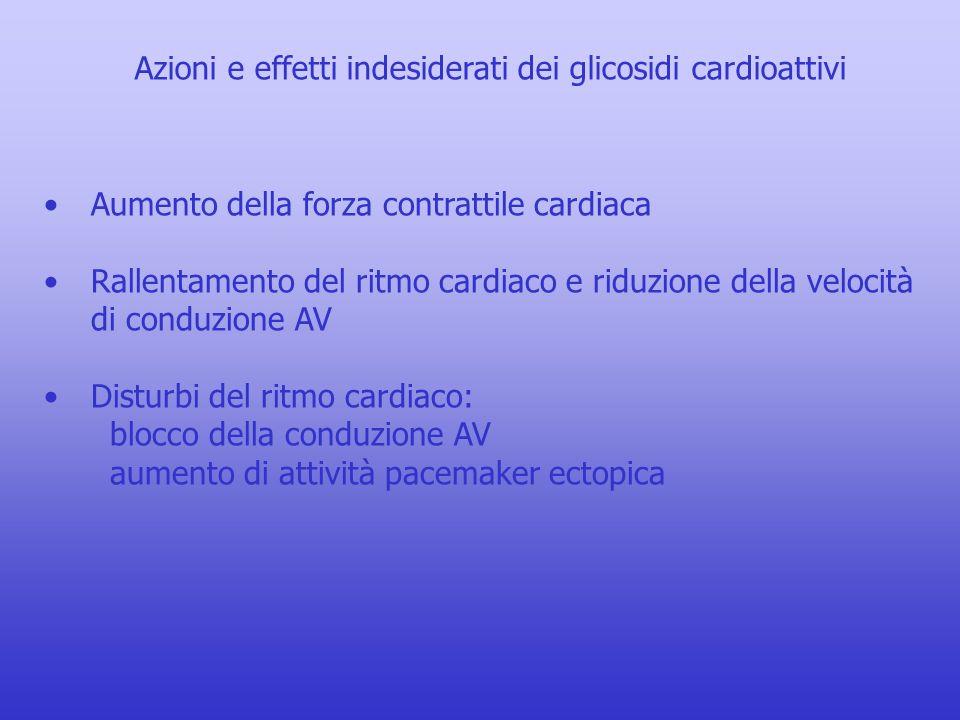 Azioni e effetti indesiderati dei glicosidi cardioattivi Aumento della forza contrattile cardiaca Rallentamento del ritmo cardiaco e riduzione della v