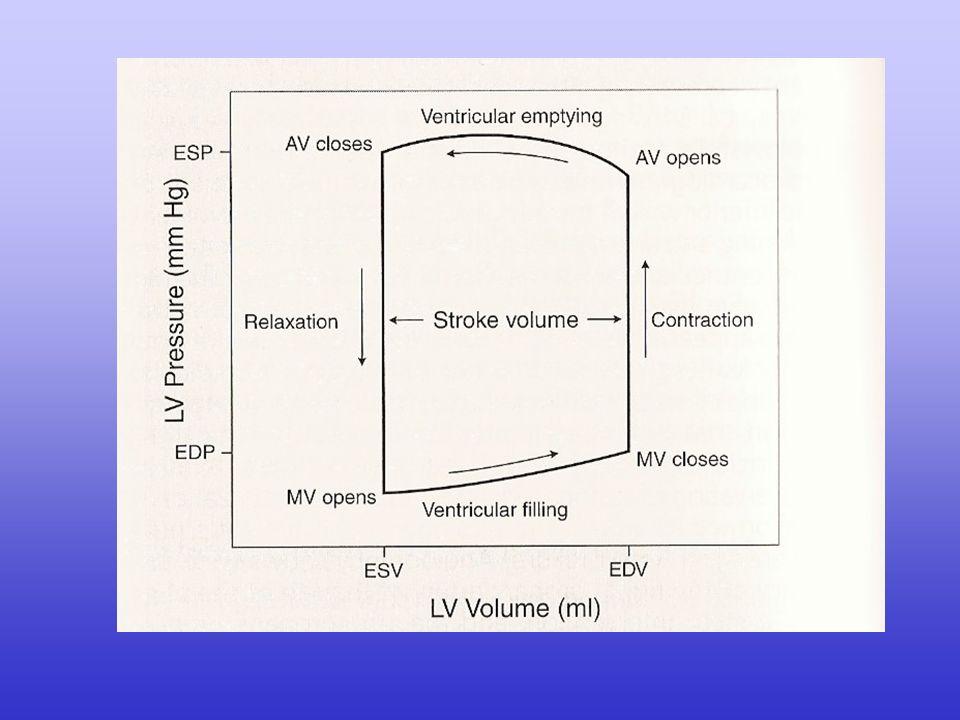SV = EDV - ESV A sua volta, la gittata sistolica dipende dalla differenza tra il volume telediastolico e il volume telesistolico: