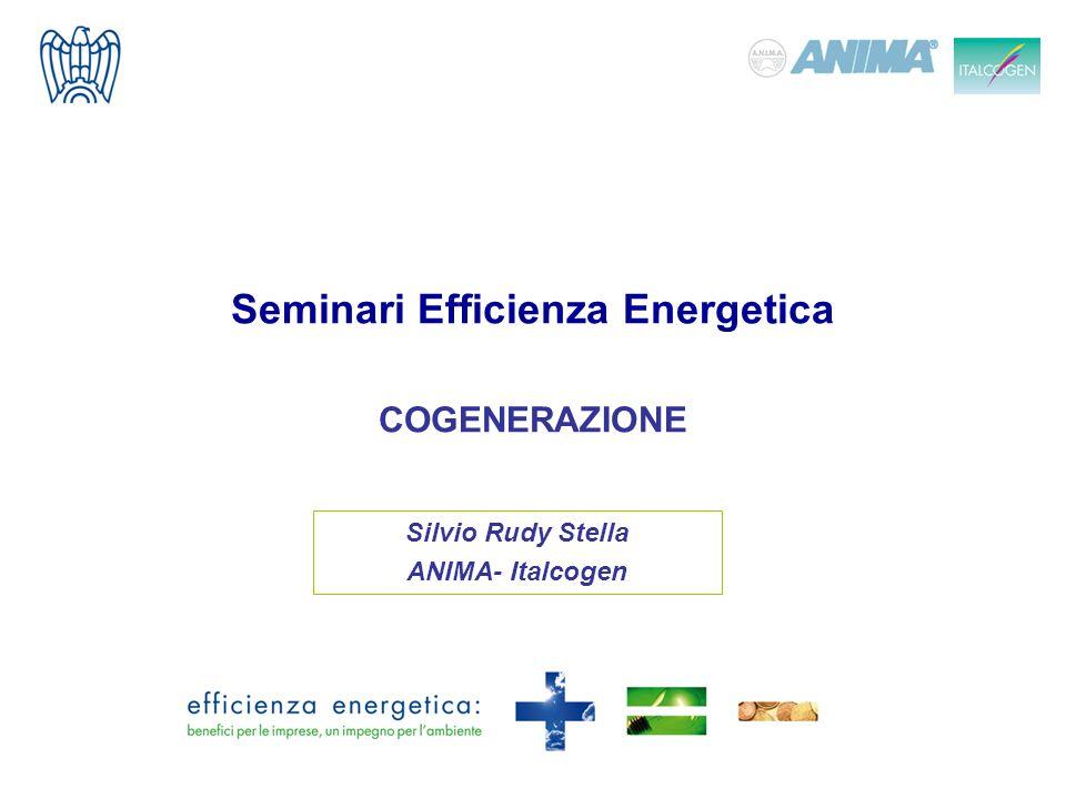 Seminari Efficienza Energetica COGENERAZIONE Silvio Rudy Stella ANIMA- Italcogen