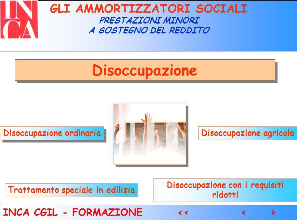 4 Modello DS 22 GLI AMMORTIZZATORI SOCIALI PRESTAZIONI MINORI A SOSTEGNO DEL REDDITO INCA CGIL - FORMAZIONE