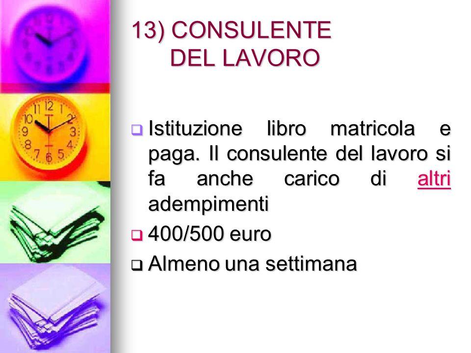 13) CONSULENTE DEL LAVORO Istituzione libro matricola e paga.