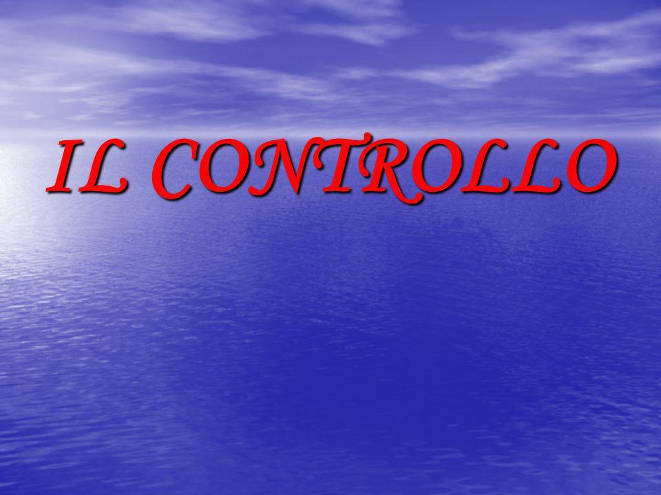 SISTEMI DI CONTROLLO CONTABILE TIPO DI SOCIETA ORGANO PREPOSTO AL CONTROLLO CONTABILE S.p.A.