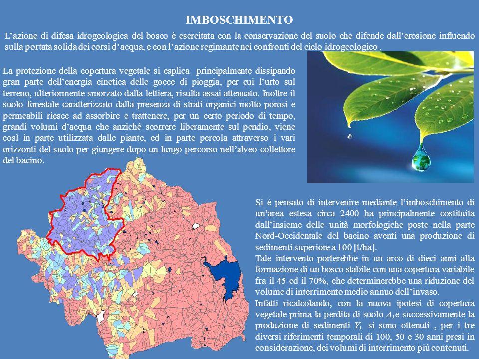 IMBOSCHIMENTO Lazione di difesa idrogeologica del bosco è esercitata con la conservazione del suolo che difende dallerosione influendo sulla portata s