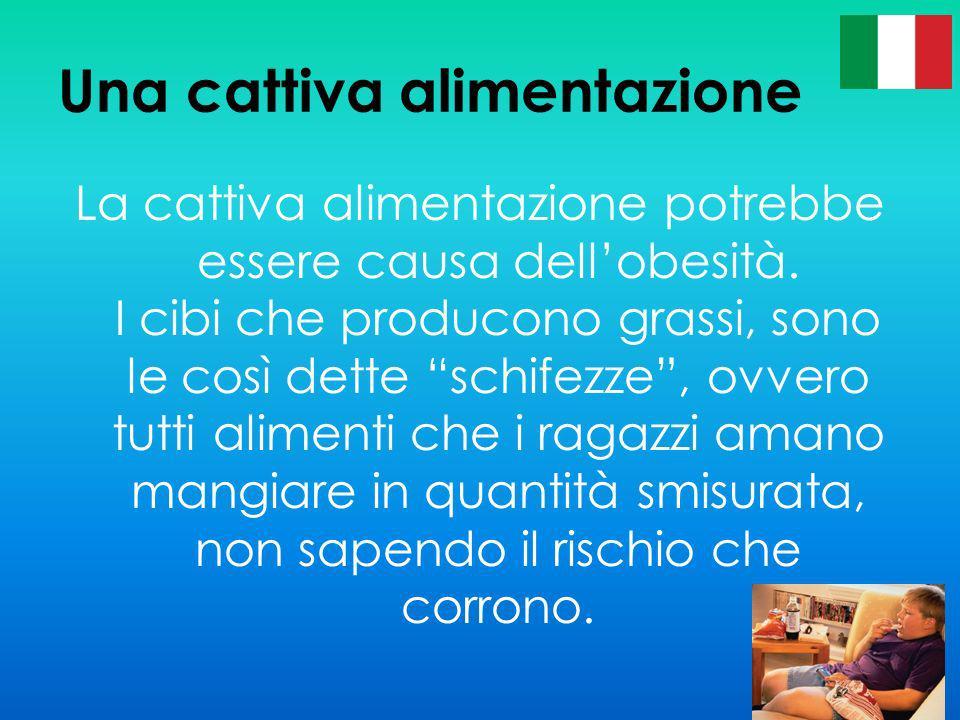 Una cattiva alimentazione La cattiva alimentazione potrebbe essere causa dellobesità. I cibi che producono grassi, sono le così dette schifezze, ovver