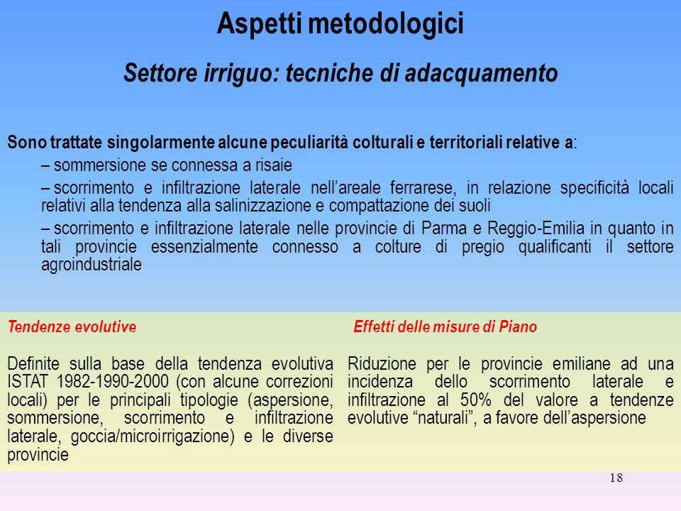 18 Aspetti metodologici Settore irriguo: tecniche di adacquamento Definite sulla base della tendenza evolutiva ISTAT 1982-1990-2000 (con alcune correz