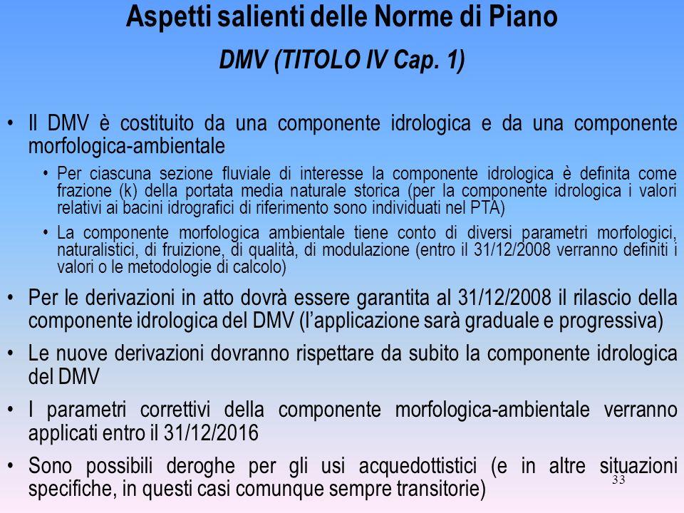 33 Aspetti salienti delle Norme di Piano DMV (TITOLO IV Cap. 1) Il DMV è costituito da una componente idrologica e da una componente morfologica-ambie