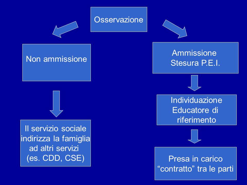 Osservazione Non ammissione Ammissione Stesura P.E.I. Individuazione Educatore di riferimento Presa in carico contratto tra le parti Il servizio socia