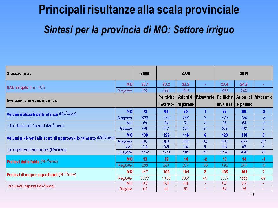 13 Principali risultanze alla scala provinciale Sintesi per la provincia di MO: Settore irriguo