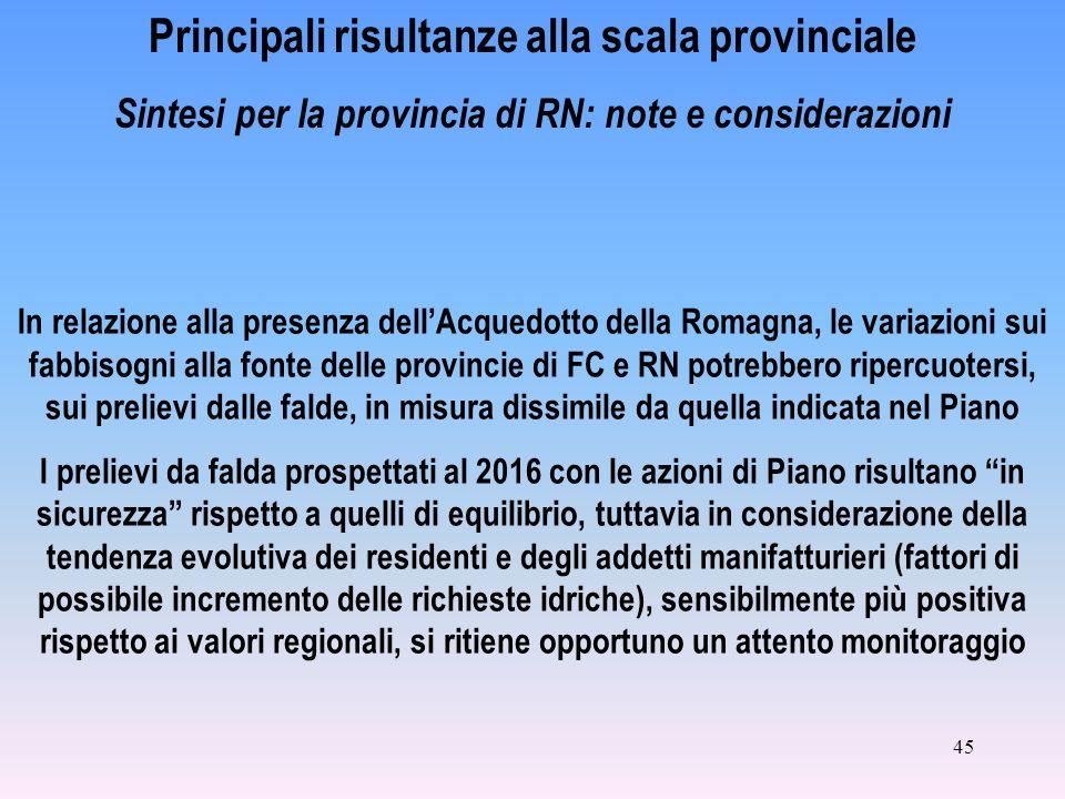 45 Principali risultanze alla scala provinciale Sintesi per la provincia di RN: note e considerazioni In relazione alla presenza dellAcquedotto della