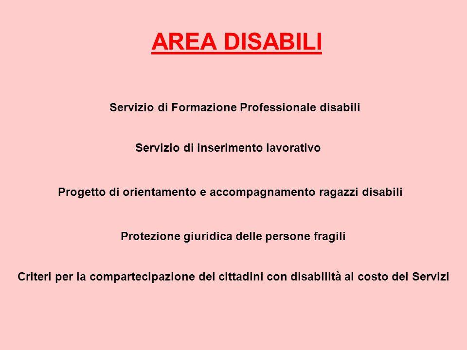 AREA DISABILI Servizio di Formazione Professionale disabili Servizio di inserimento lavorativo Progetto di orientamento e accompagnamento ragazzi disa