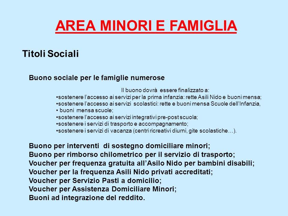 Titoli Sociali Buono sociale per le famiglie numerose Il buono dovrà essere finalizzato a: sostenere laccesso ai servizi per la prima infanzia: rette