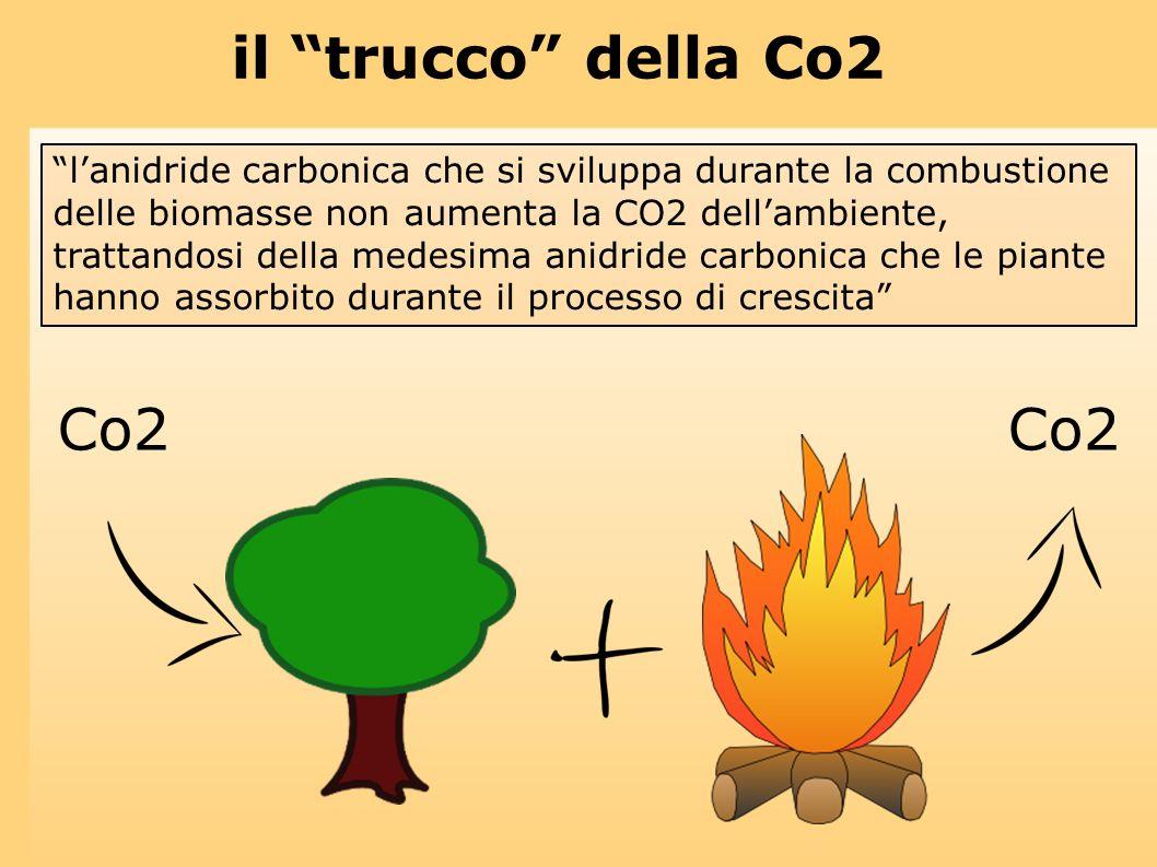 il trucco della Co2 lanidride carbonica che si sviluppa durante la combustione delle biomasse non aumenta la CO2 dellambiente, trattandosi della medes