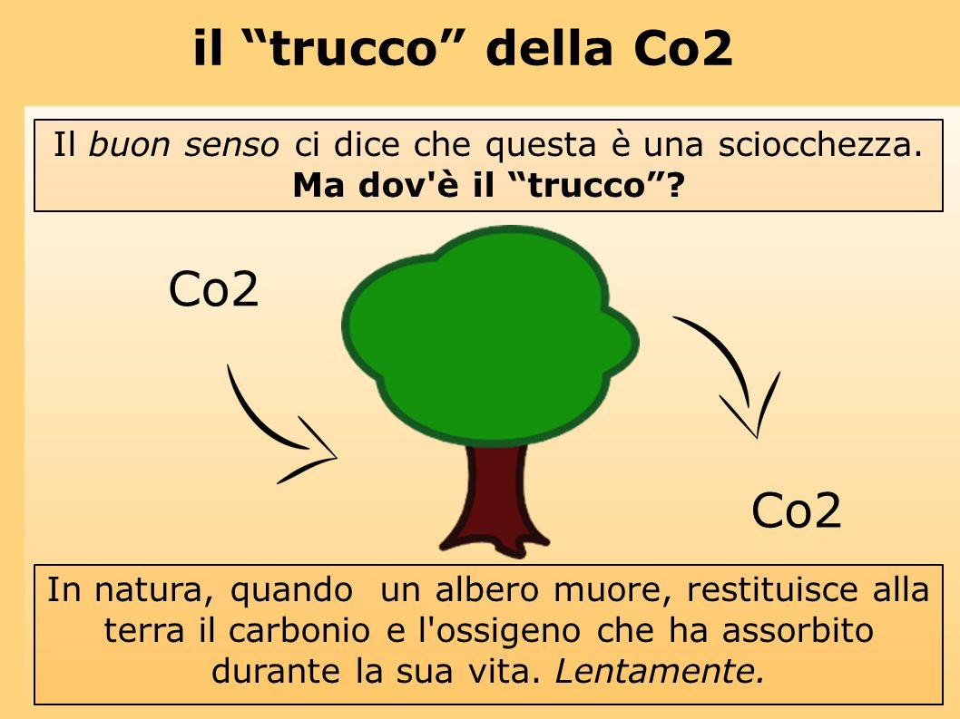 il trucco della Co2 Co2 Il buon senso ci dice che questa è una sciocchezza. Ma dov'è il trucco? In natura, quando un albero muore, restituisce alla te