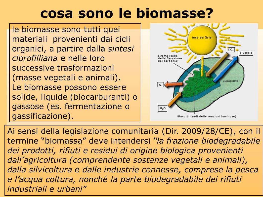 le biomasse sono tutti quei materiali provenienti dai cicli organici, a partire dalla sintesi clorofilliana e nelle loro successive trasformazioni (ma