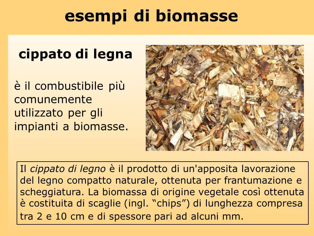 esempi di biomasse cippato di legna è il combustibile più comunemente utilizzato per gli impianti a biomasse. Il cippato di legno è il prodotto di un'