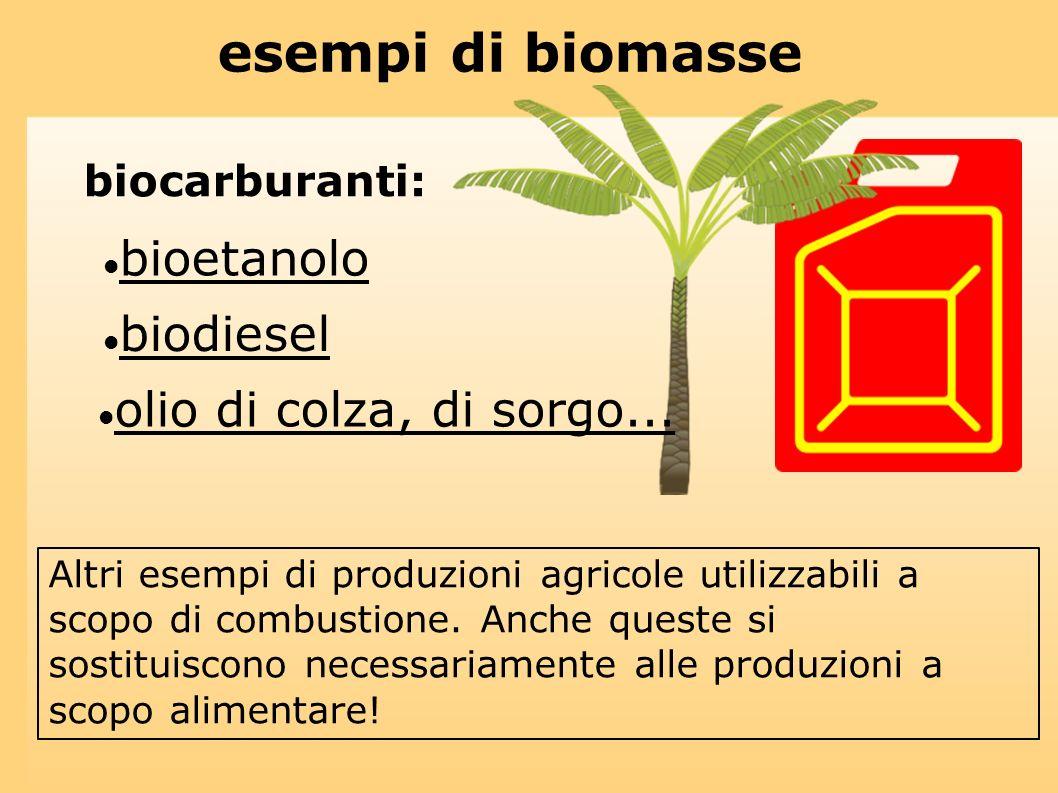 esempi di biomasse biocarburanti: bioetanolo biodiesel olio di colza, di sorgo... Altri esempi di produzioni agricole utilizzabili a scopo di combusti