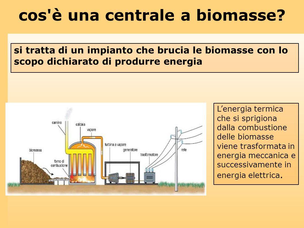 cos'è una centrale a biomasse? Lenergia termica che si sprigiona dalla combustione delle biomasse viene trasformata in energia meccanica e successivam