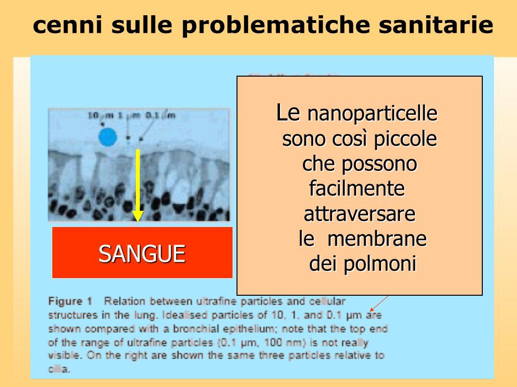 Le nanoparticelle sono così piccole che possono che possonofacilmenteattraversare le membrane le membrane dei polmoni dei polmoni SANGUE cenni sulle p