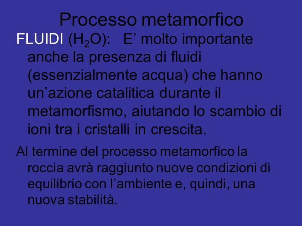 Processo metamorfico FLUIDI (H 2 O): E molto importante anche la presenza di fluidi (essenzialmente acqua) che hanno unazione catalitica durante il me