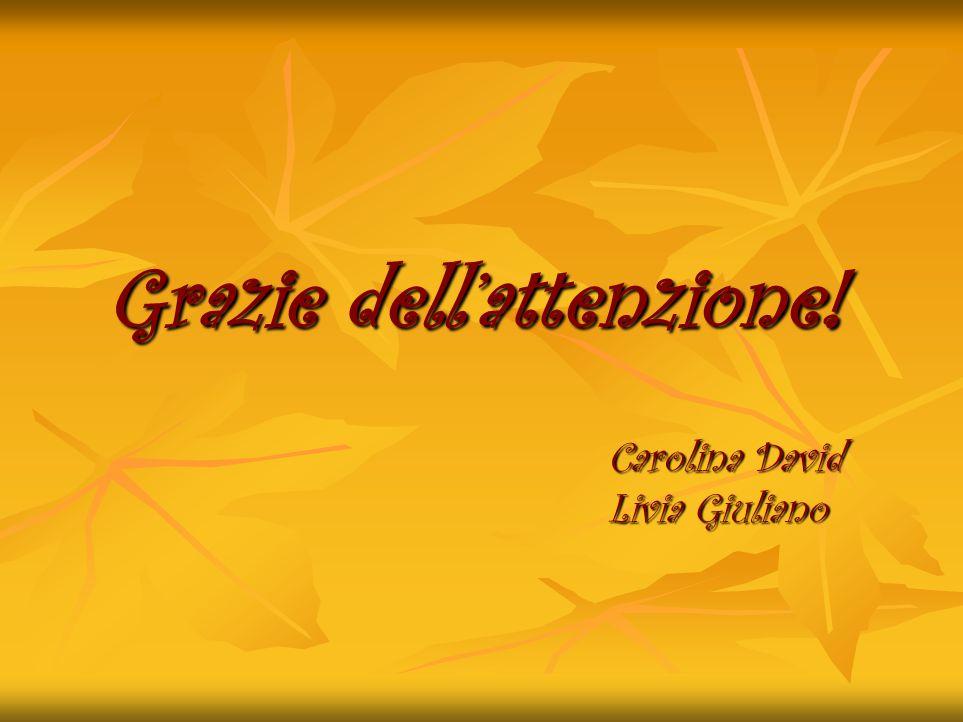 Grazie dellattenzione! Carolina David Livia Giuliano
