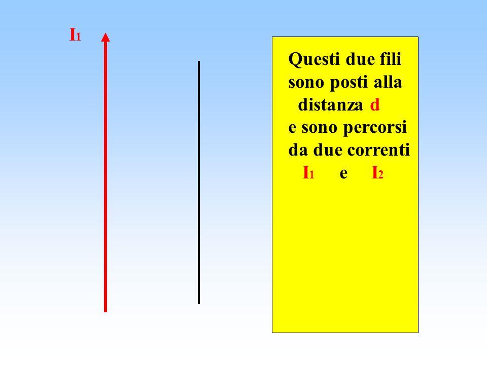 Questi due fili sono posti alla distanza d e sono percorsi da due correnti I 1 e I 2 I1I1