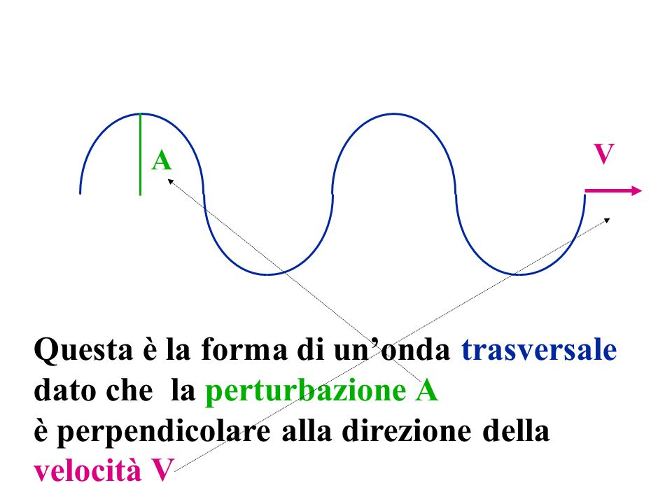 A V Questa è la forma di unonda trasversale dato che la perturbazione A è perpendicolare alla direzione della velocità V