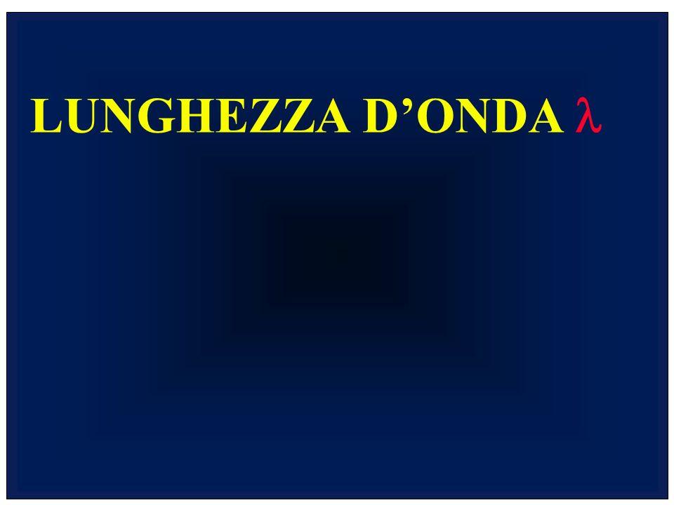 LUNGHEZZA DONDA