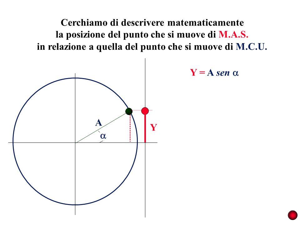 Cerchiamo di descrivere matematicamente la posizione del punto che si muove di M.A.S. in relazione a quella del punto che si muove di M.C.U. A Y Y = A