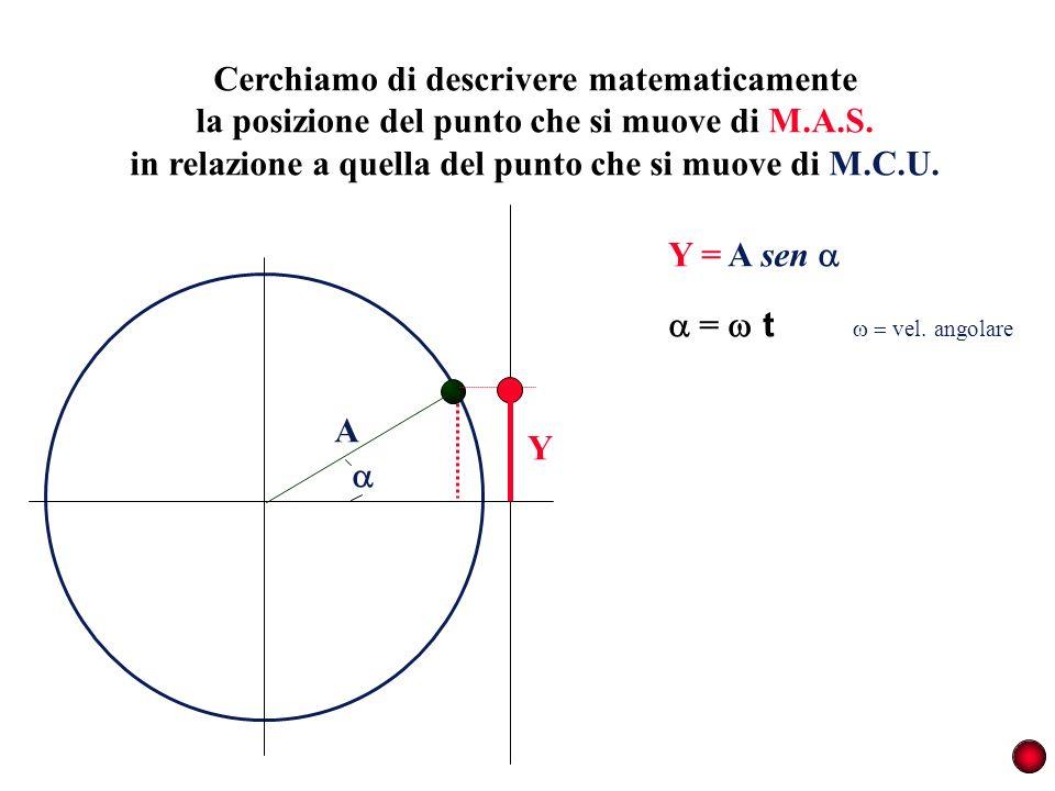 Cerchiamo di descrivere matematicamente la posizione del punto che si muove di M.A.S. in relazione a quella del punto che si muove di M.C.U. A Y = t v