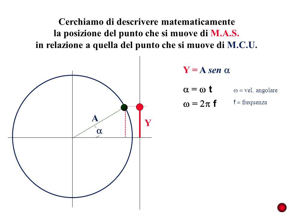 Cerchiamo di descrivere matematicamente la posizione del punto che si muove di M.A.S. in relazione a quella del punto che si muove di M.C.U. A Y = t =