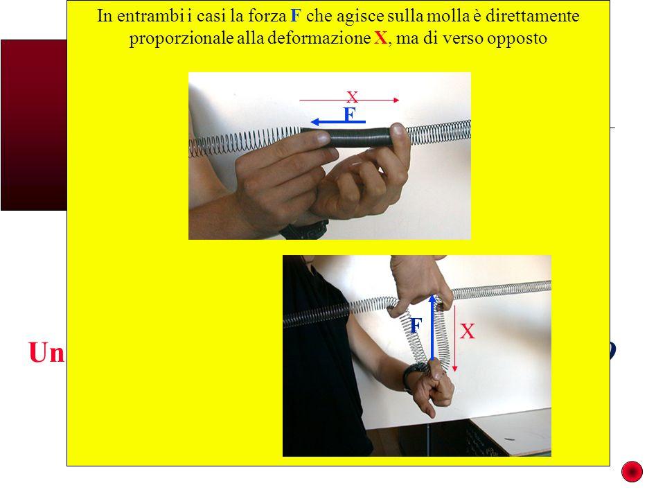 In entrambi i casi la forza F che agisce sulla molla è direttamente proporzionale alla deformazione X, ma di verso opposto X F X F